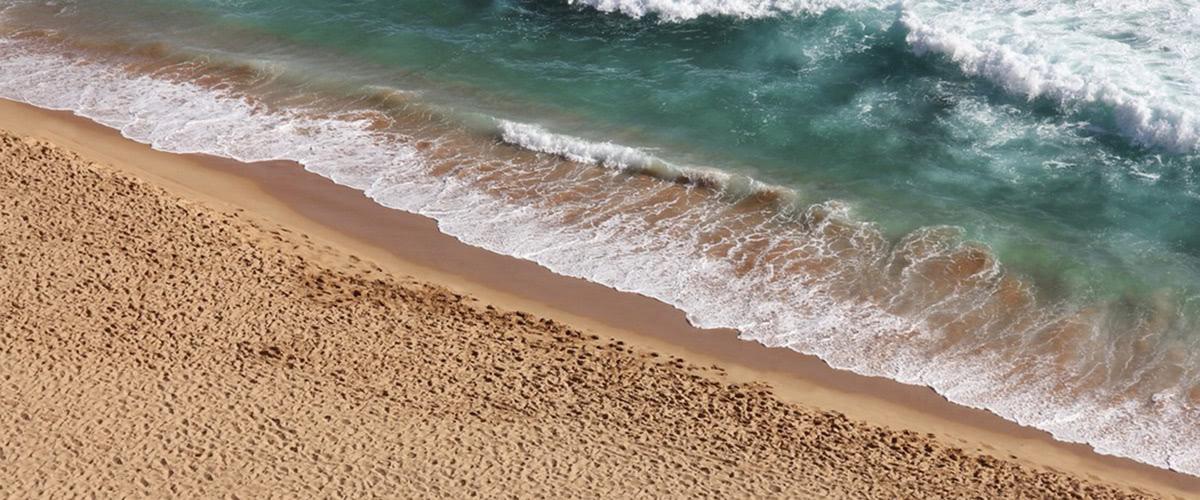 National Trust Beach Picnic
