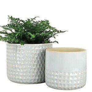 LA JOLIE MUSE Ceramic Planter - Set of 2 (Glacier Grey)